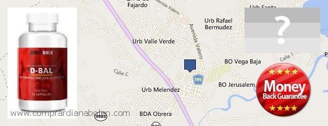 Where Can I Purchase Dianabol Steroids online Fajardo, Puerto Rico